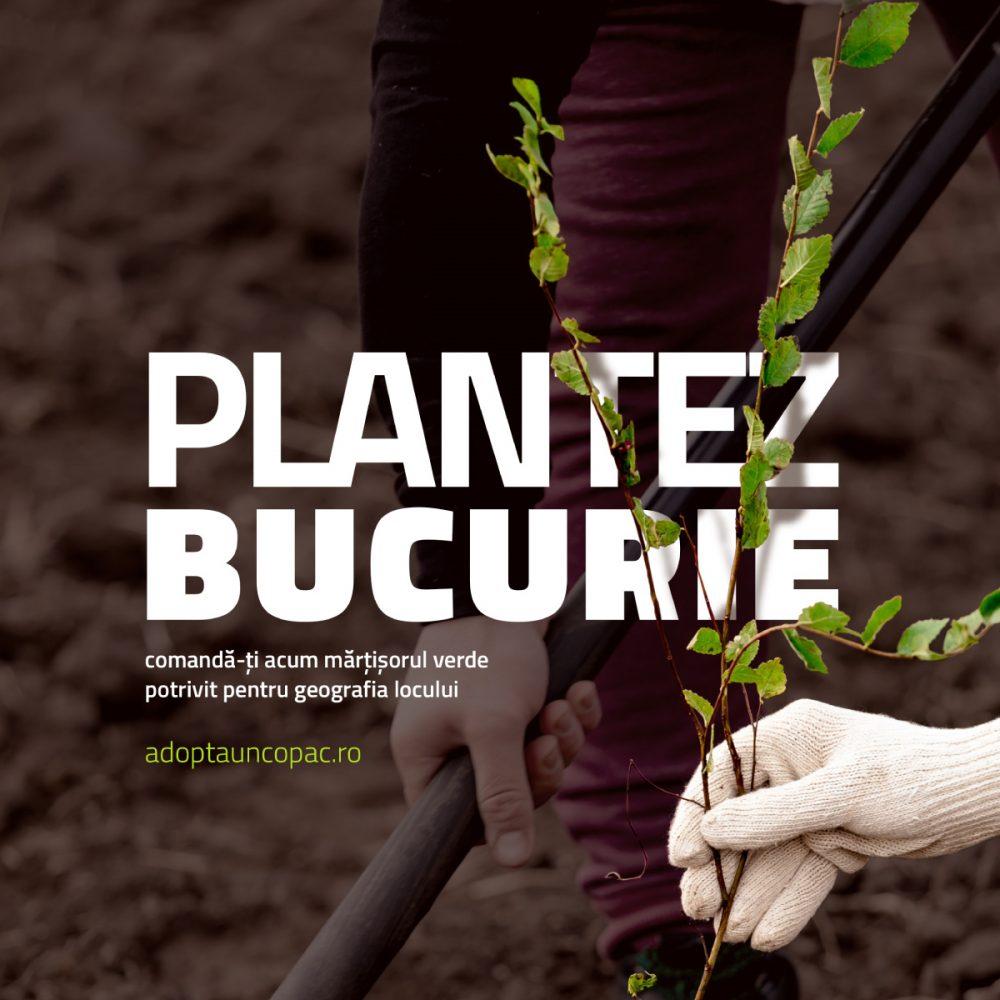 AUC_campanie_FB_bucurie_B_1200x1200