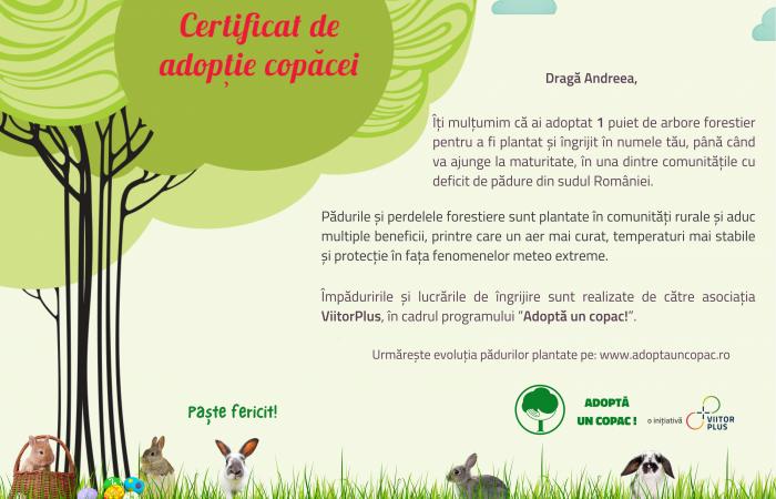 Certificat de paste