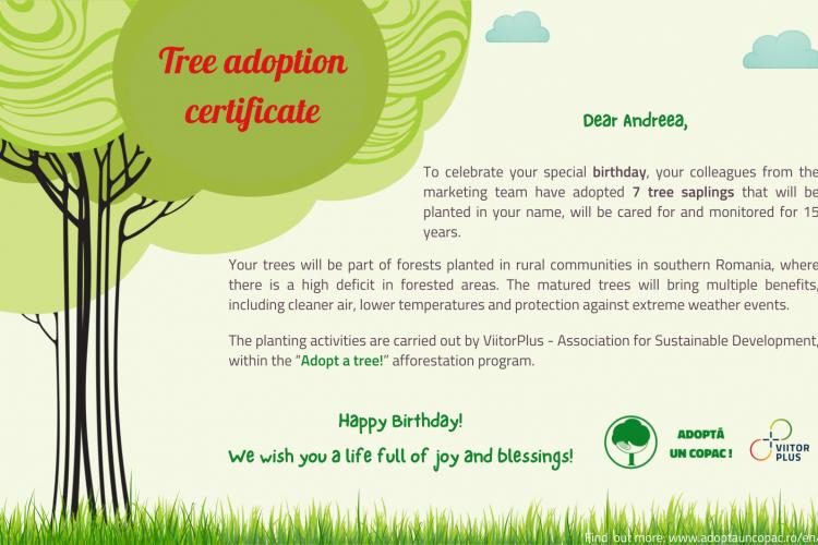 Adoption certificate - optiprint (3)